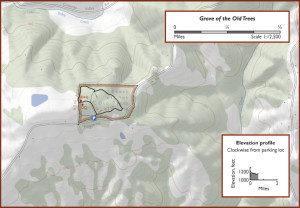 Grove of the Old Trees Map