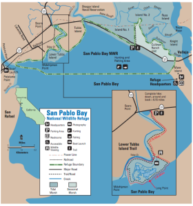 Tubbs Island Trail map - San Pablo Bay National Wildlife Refuge